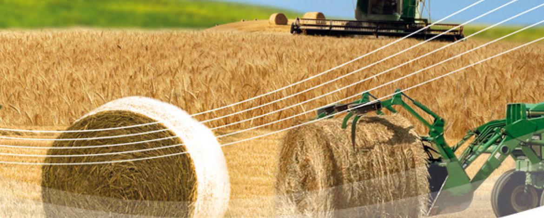 TOTAL Landwirtschaft