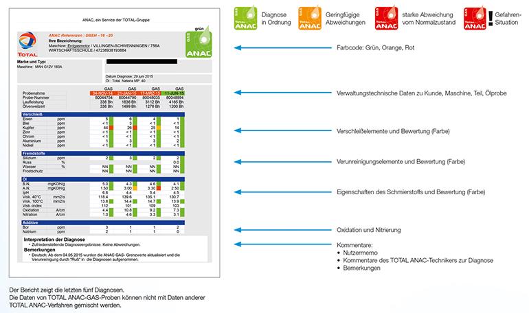 ANAC Diagnosebericht